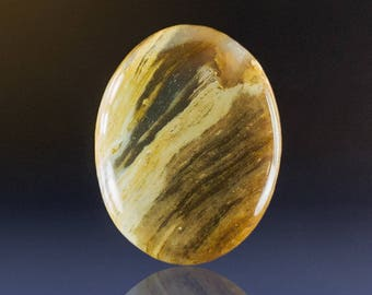 Petrified Wood Cabochon, 36x26x6mm, 34 cts (NF1196)