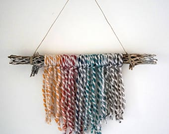 Cholla Cactus: Rainbow Yarn