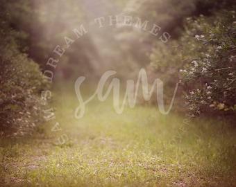 Summer Creamy Digital backdrop, summer digital background, Dreamy background, Forest background, Forest backdrop, Summer backdrop background