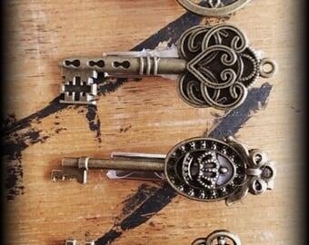 Steampunk hair clips