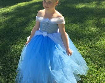 Cinderella ball gown/ tutu dress