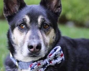 Patriotic Stars Dog Bowtie