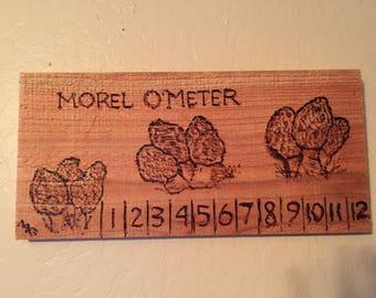 Morel O'Meter