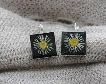 Pair of earrings 2 cm in resin and dried daisies flowers