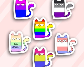 Gay pride LGBT cat stickers, Gay sticker set, No homo print, lesbian trans bisexual pansexual asexual ace
