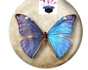 1 cabochon clear 30 mm for pendant or bag and bottle opener Butterfly catcher
