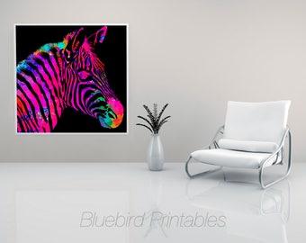 Rainbow Zebra on Black