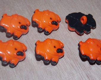 Orange set of six buttons with pig foot