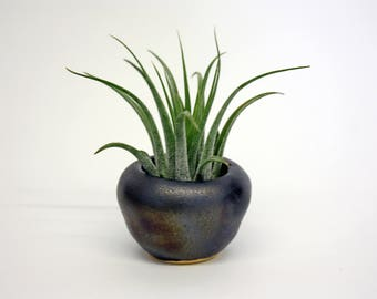 Ceramic Planter Pot for airplant - Modern planter - Modern Minimalist - Pottery