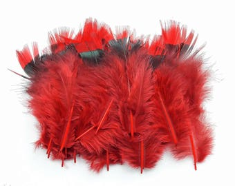 set of 20 feathers Red