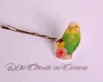 Parakeet green and yellow hair clip