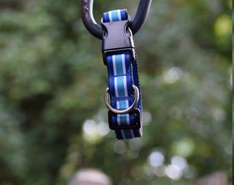 Sky Blue Stripes Collar