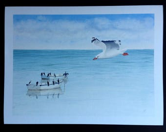 Mixed Dozen; Giclee print of a watercolour painting of little pied cormorants sitting on boats and a seagull flying by.