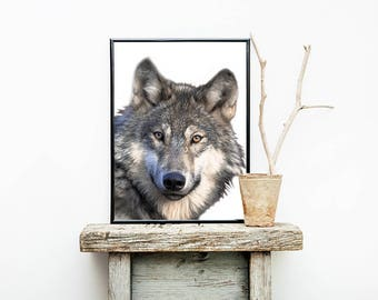 Wolf Print, Woodlands Nursery Wall Art, Wolf Poster, Forest Animal, Forest Print, Digital Download, Wolf Wall Art, Wolf Decor