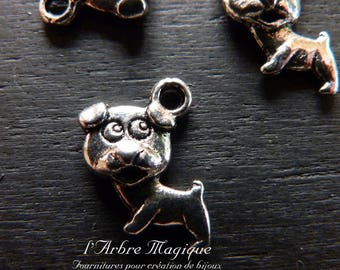 The 10 x silver dog charm