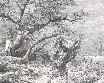 Somalia 1885, Pursued by the wasps, Old Antique Vintage Engraving Art Print, Man, Robe, Running, Standing, Wasp, Pestered, Tree, Forest