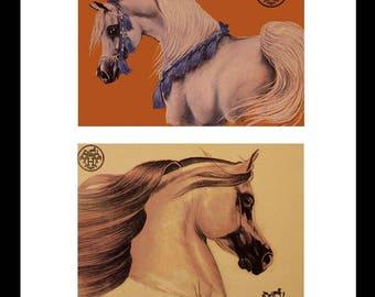 Fairchild Paris Horses Vintage Hermes ad
