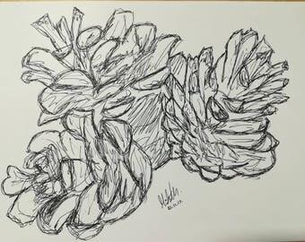 Pinecones Ink Drawing