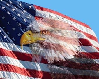 Poster - USA Flag with Bald Eagle