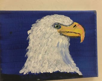 Bald headed eagle (was used in picture book)