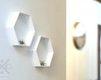 Hexagonal planter, Wall air planter, wall planter, wall planter set, air plant holders, modern wall decor, air planter wall, Octagon planter