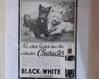 1930s late Art Deco original advertising pages from Country Life magazine Black and White whiskey dogs