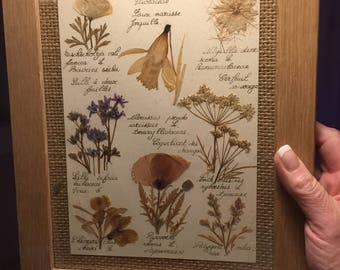 Dried flowers composition / Vintage pressed flowers in a wooden frame
