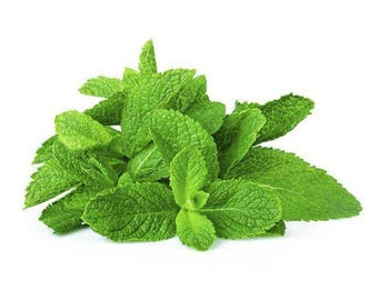 Peppermint Essential Oil 100% natural pure from india free shipping