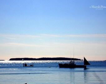 The Maine Lobsterman Photograph