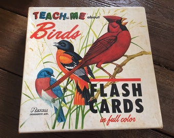Vintage bird  flashcards 1960s small prints Teach Me About Birds