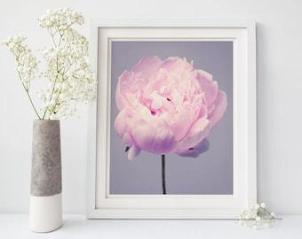 Flower Photography, Peony Photography, Girls Room Wall Art, Pale Pink, Nursery Wall Art, Home Decor, Large Wall Art, Floral Botanical Print