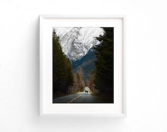 "large landscape photography, mountain landscape, wilderness landscape, colorful landscape wall art, wildlife photography - ""Crossing Paths"""