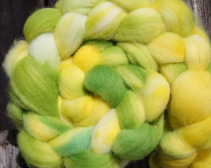 Kettle Dyed Falkland Wool Top.  Soft and easy to spin. 4oz  Braid. Spin. Felt. Roving. F181