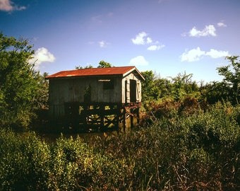 Bayou Photography, Southern Louisiana Art, Boat House, Nature Photography, Abandoned Building, Bayou Swamp, Cajun Decor, Creole, Boathouse