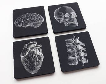 Drink Coasters medical gift doctor nurse physician science decor biology goth home kitchen office mat macabre stocking stuffer men coworker