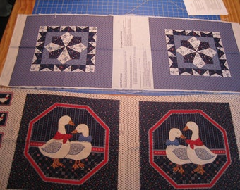 Two 16 x 16 Country Pillow Forms