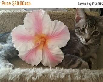 On SALE Hibiscus, Hair flower,Pink, Pink Hibiscus, Hibiscus flower, Pinup, Tropical flower, Wedding flower, Tiki oasis, Tiki
