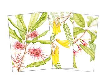 Set of 3 Greeting cards - Rewarewa, Kowhai, Kotukutuku, NZ natives
