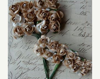 ONSALE Tea Stained Paper Roses 2 Dozen Lot