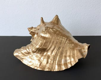 Large Gold Real Conch Shell - Authentic Conch Seashell Gold Painted - Gold Dipped Large Shell -