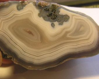 Polished Laguna Half Rock Specimen
