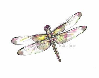 Dragonfly - Fine Art Print