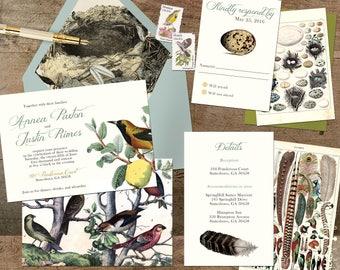 Wedding Invitation Suite: SAMPLE (Birds, Feathers, Eggs, Ornithology, Nests)