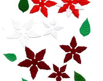 257 - Set cut poinsettias for your cards or scrapbooking