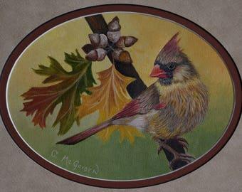 Framed Bird Painting:  Female Cardinal -  cardinal painting, redbirds, oak tree, fall leaves, original painting, fall, wildlife, birds