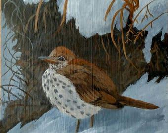 Wood Thrush bird original acrylic painting, songbird painting on wood, Don Reardon