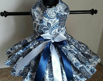 Dog Dress Blue Paisley