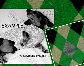 Green Argyle Mini Dachshund OOAK Sweater Light Weight Wool and Cashmere