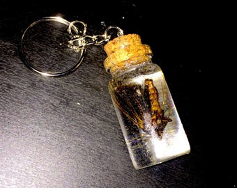 Real Moth Preserved in Resin Keychain