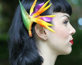 Bird of Paradise Pinup Tropical Hair Flower